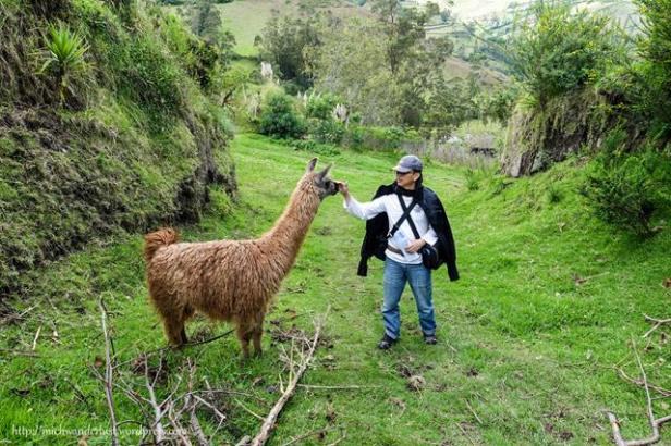 On the road from Isinlivi to Guantualo   Quilotoa Loop   Ecuador   hiking in Ecuador   MichWanderlust